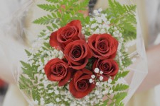 floral-6x-red-roses